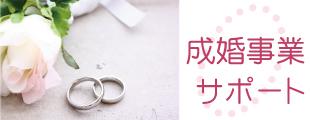 成婚事業のイメージ